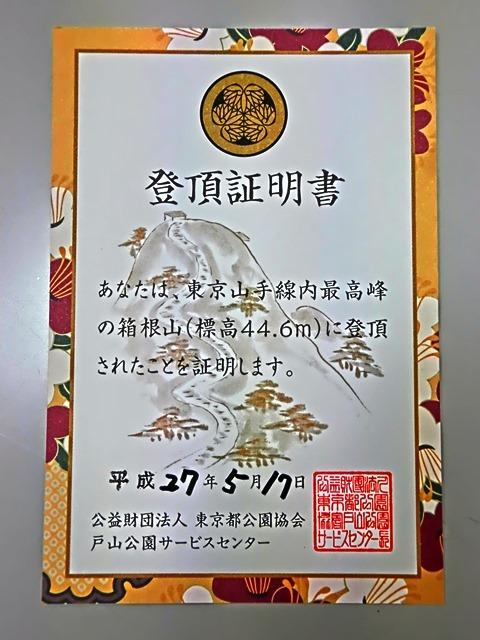 CIMG6798.JPG