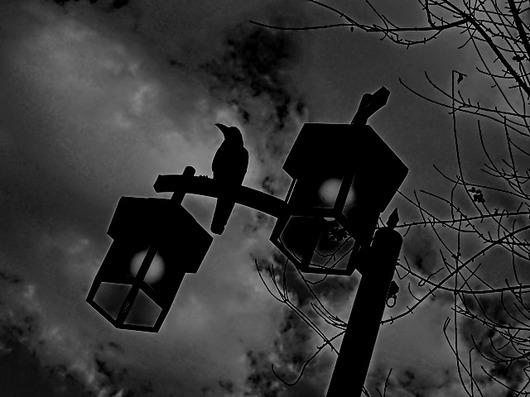 月のない夜.jpg